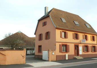 Vente Immeuble Habsheim (68440) - photo