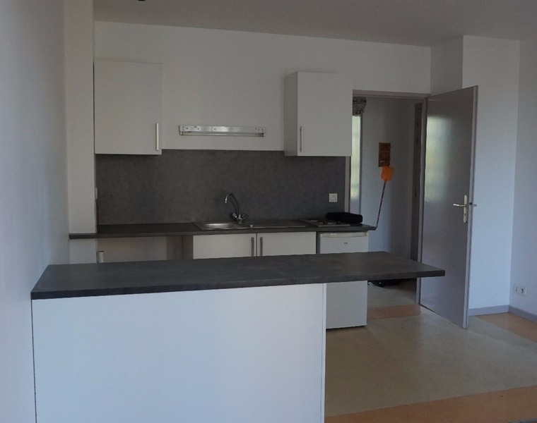 Renting Apartment 2 rooms 40m² Pau (64000) - photo