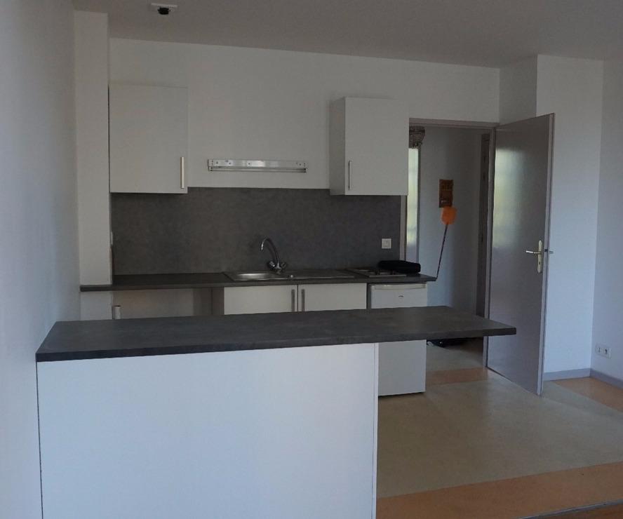 Renting Apartment 2 rooms 40m² Pau (64000) - photo