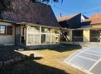 Sale House 4 rooms 100m² Habsheim (68440) - Photo 1