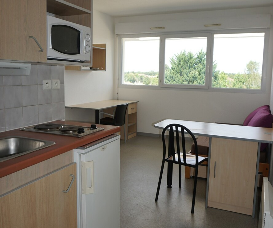 Location Appartement 1 pièce 18m² Pau (64000) - photo