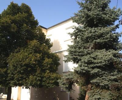 Vente Maison 7 pièces 150m² Feurs (42110) - Photo 13