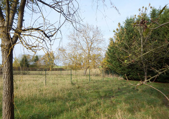 Vente Terrain 959m² 4 Km de Chéroy - photo