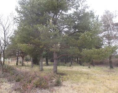Sale Land 3 001m² VALLON-PONT-D'ARC - photo