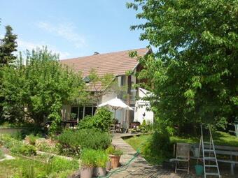 Vente Maison 7 pièces 304m² Rixheim (68170) - photo