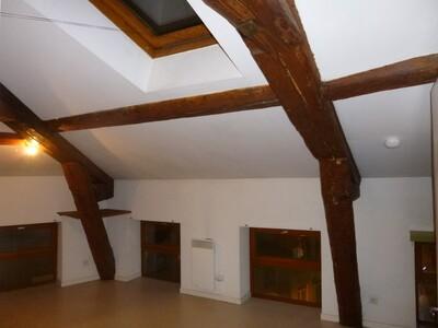 Location Appartement 2 pièces 32m² Saint-Étienne (42000) - photo
