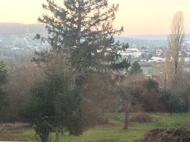 Vente Terrain 1 593m² A 5 min de Vesoul - photo