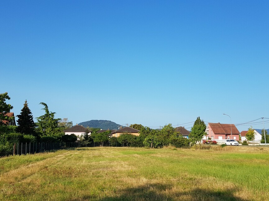 Le Hameau de l'Aubach à Scherwiller Scherwiller (67750)