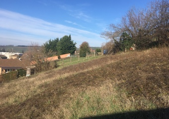 Vente Terrain 850m² Amplepuis (69550) - photo