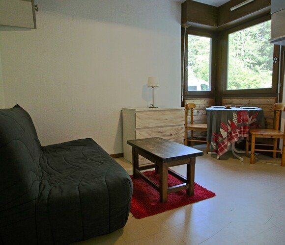 Vente Appartement 1 pièce 17m² Chamrousse (38410) - photo