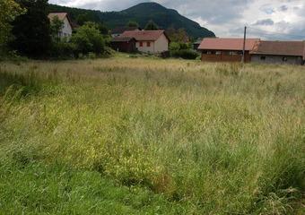Vente Terrain 2 312m² Saint-Pierre-de-Curtille (73310) - photo