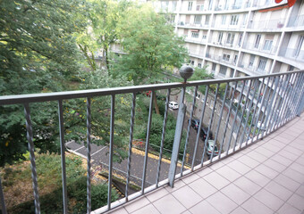 Location Appartement 4 pièces 100m² Mulhouse (68100) - photo