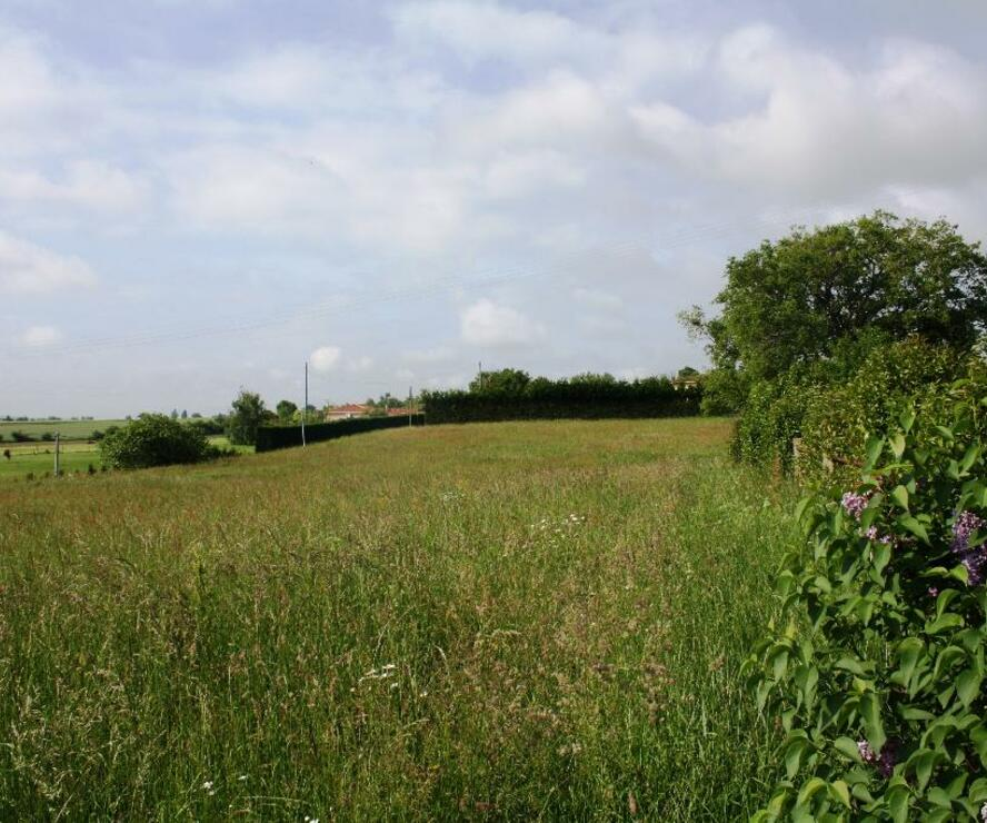 Sale Land 1 700m² SECTEUR GIMONT - photo
