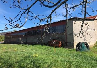 Vente Maison 6 pièces 200m² Pontcharra-sur-Turdine (69490) - photo