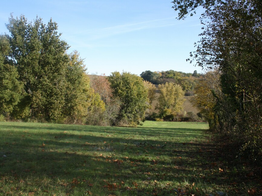 Sale Land 3 700m² Boulogne-sur-Gesse (31350) - photo