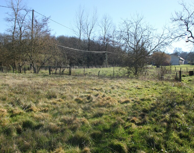 Vente Terrain 1 605m² Poursiugues-Boucoue (64410) - photo