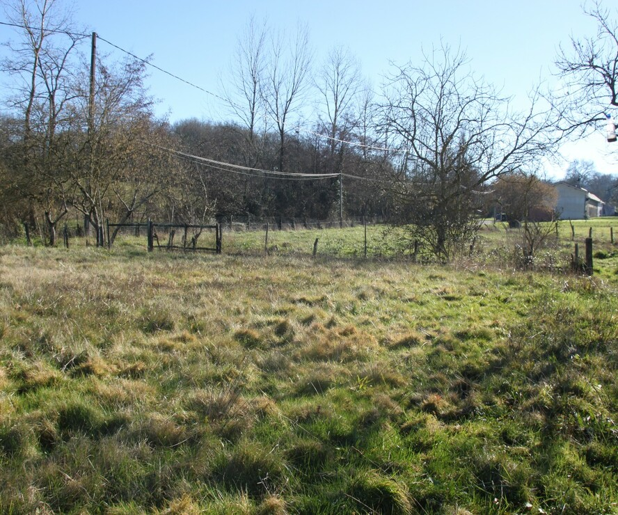 Sale Land 1 605m² Poursiugues-Boucoue (64410) - photo