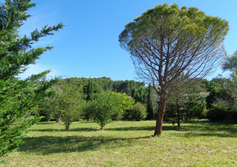 Sale Land 1 000m² Cadenet (84160) - Photo 1