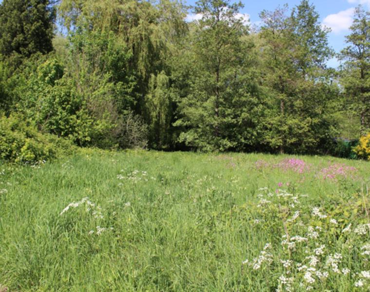 Vente Terrain La Madelaine-sous-Montreuil (62170) - photo