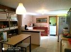 Location Maison 4 pièces 100m² La Saline-les-Hauts (97422) - Photo 5