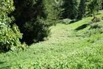 Sale Land Veurey-Voroize (38113) - Photo 1