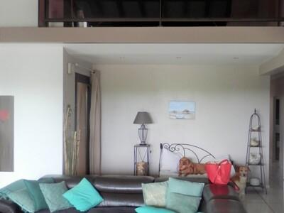 Vente Maison 6 pièces 160m² Montfort-en-Chalosse (40380) - Photo 1