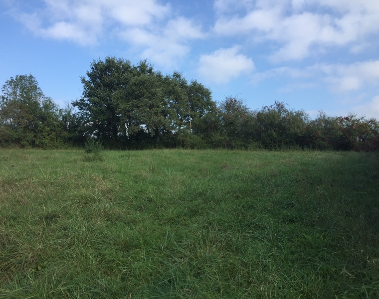 Sale Land 1 730m² Samatan (32130) - photo