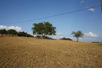 Vente Terrain 3 000m² Lombez (32220) - photo 2