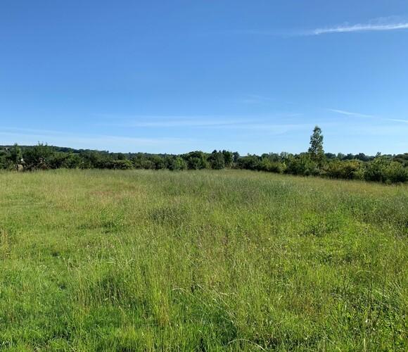 Sale Land 1 800m² L'Isle-Jourdain (32600) - photo