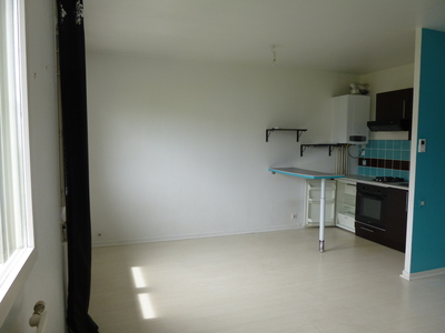 Location Appartement 1 pièce 35m² Saint-Étienne (42100) - Photo 4