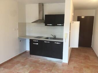 Location Appartement 1 pièce 23m² Sainte-Clotilde (97490) - photo