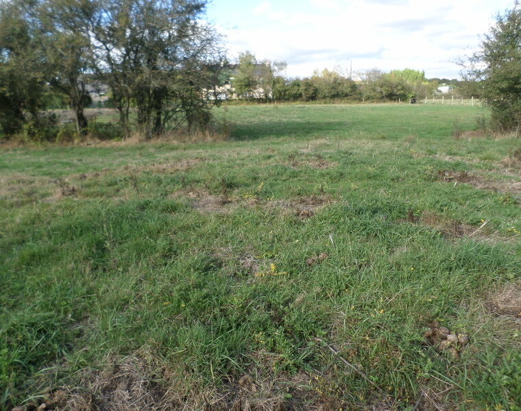 Vente Terrain Prinquiau (44260) - photo