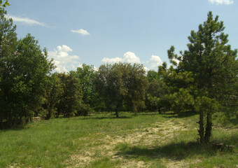 Sale Land 5 300m² Payzac (07230) - photo