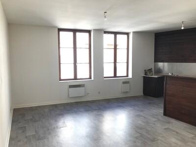 Location Appartement 2 pièces 49m² Saint-Étienne (42000) - Photo 2