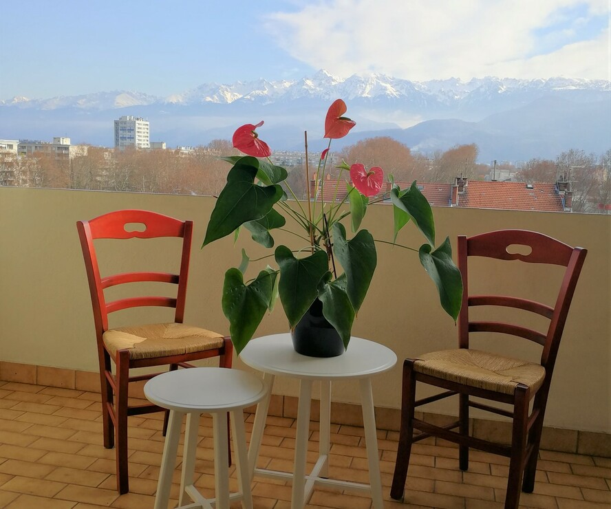 Vente Appartement 74m² Grenoble (38000) - photo