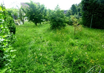Vente Terrain 211m² Saint-Soupplets (77165) - photo