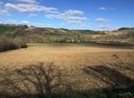 Sale Land 2 564m² Lombez (32220) - Photo 5