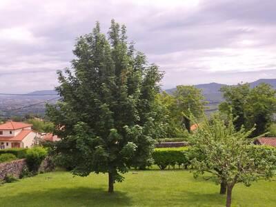 Vente Terrain 950m² Le Crest (63450) - Photo 2