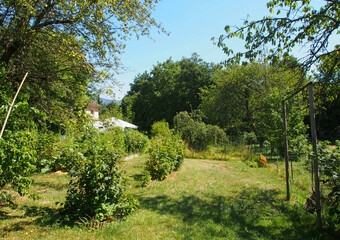Sale Land 730m² Brié-et-Angonnes (38320) - photo