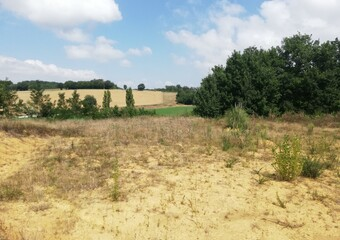 Sale Land 3 300m² 10MN LOMBEZ - photo