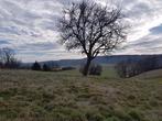 Vente Terrain 1 500m² Champier (38260) - Photo 2