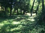 Vente Maison 3 pièces 100m² 6 km Egreville - Photo 5