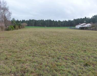 Vente Terrain 5 240m² Beauzac (43590) - photo