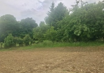 Sale Land 800m² Beaurainville (62990) - photo