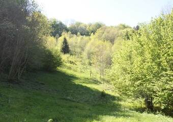 Vente Terrain 43 500m² Mieussy (74440) - photo