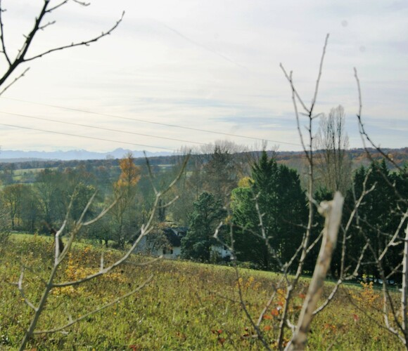 Vente Terrain 1 469m² GIMONT - photo