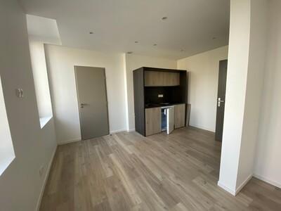Location Appartement 1 pièce 19m² Saint-Étienne (42000) - Photo 5
