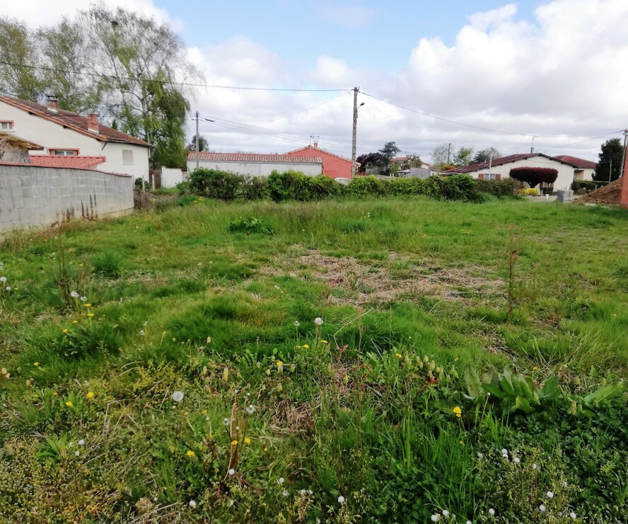 Vente Terrain 556m² SECTEUR RIEUMES - photo