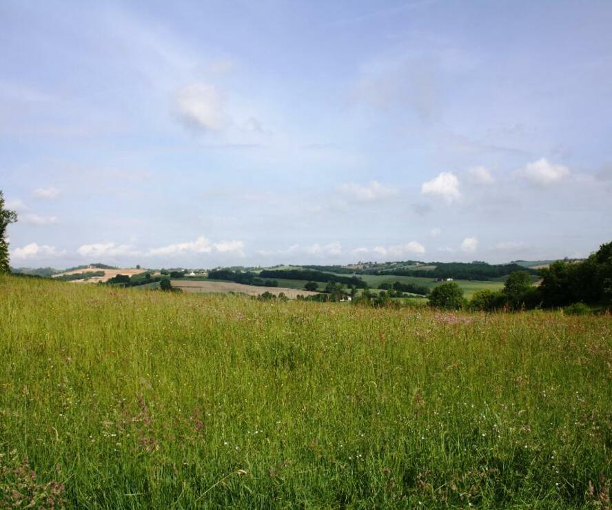 Sale Land 2 181m² Gimont (32200) - photo