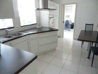 Vente Maison 320m² Petit-Landau (68490) - photo